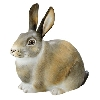 """3"""" long by 2.75"""" high.  2006 Woodland Creatures Annual Figurine."""
